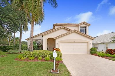 West Palm Beach Single Family Home For Sale: 2501 Egret Lake Drive