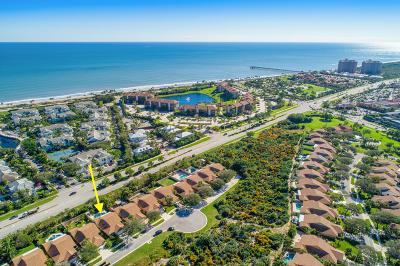 Jupiter Single Family Home For Sale: 159 Sand Pine Drive