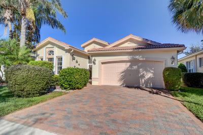 Boynton Beach Single Family Home For Sale: 7301 Kahana Drive