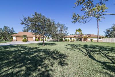 Palm Beach Gardens Single Family Home For Sale: 8256 Needles Drive