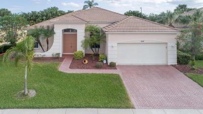 Port Saint Lucie Single Family Home For Sale: 509 SW Lake Manatee Way