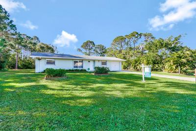 Port Saint Lucie Single Family Home For Sale: 166 SW Lancaster Lane