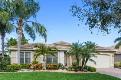 Boynton Beach Single Family Home For Sale: 7038 Great Falls Circle