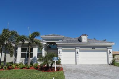 Boynton Beach Single Family Home For Sale: 9042 Golden Mountain Circle