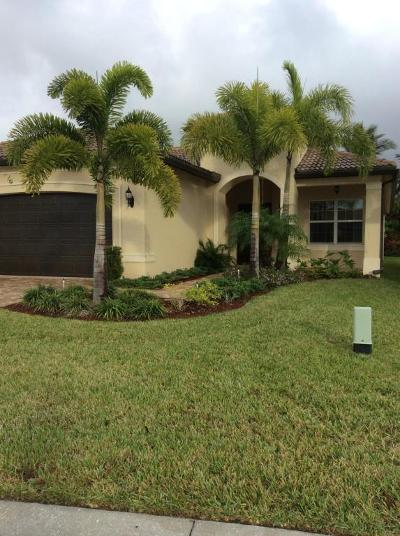 Boynton Beach Single Family Home For Sale: 11669 Dawson Range Road