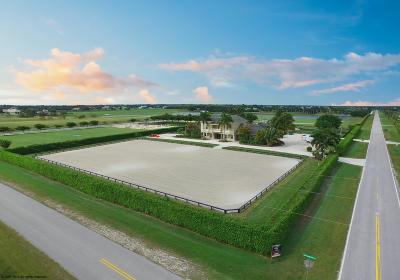 Palm Beach Point East Single Family Home For Sale: 4591 South Road