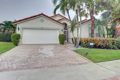 Boynton Beach Single Family Home For Sale: 7030 Haviland Circle