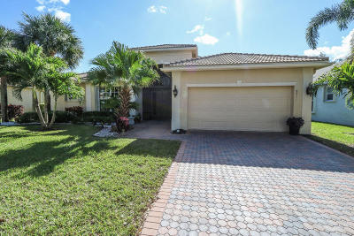 Lake Worth Single Family Home For Sale: 8911 Majorca Bay Drive