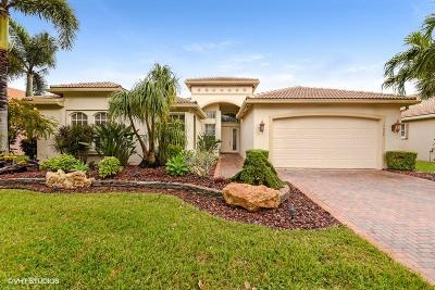 Lake Worth Single Family Home For Sale: 7906 Sunburst Terrace