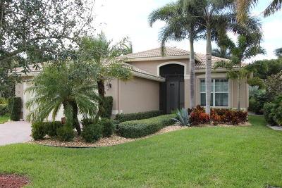 Boynton Beach Single Family Home For Sale: 9123 Meridian View Isle(S)