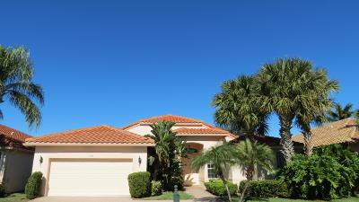 Boynton Beach Single Family Home For Sale: 6735 Catania Dr Drive