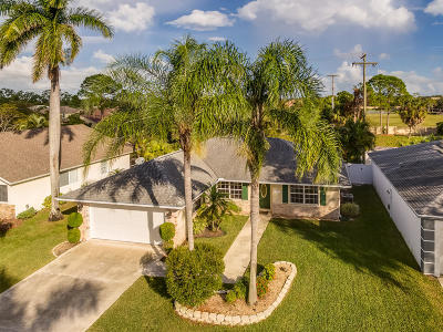 Jupiter Single Family Home For Sale: 133 Wandering Trail