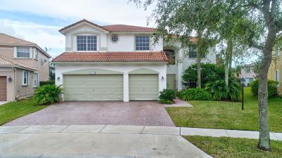 Pembroke Pines Single Family Home For Sale: 13004 NW 13th Street
