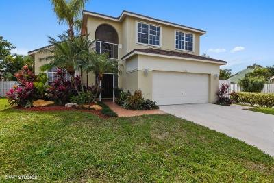 Boynton Beach Single Family Home Contingent: 1380 Auburn Court