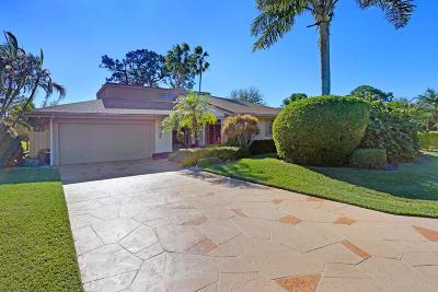 Palm Beach Gardens Single Family Home For Sale: 13824 Sand Crane Drive