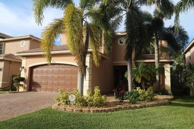 Boynton Beach Single Family Home For Sale: 8580 Breezy Hill Drive