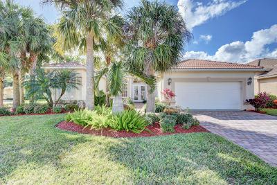 Lake Worth Single Family Home For Sale: 6585 Via Milani
