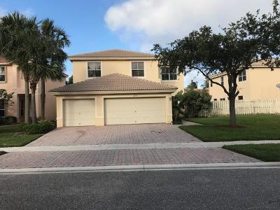 west palm Single Family Home For Sale: 4225 Maggiore Way