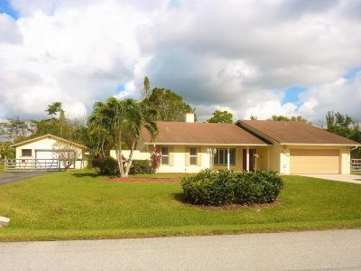 Lake Worth Single Family Home For Sale: 8525 Pinto Drive
