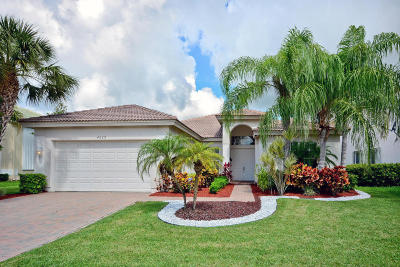 Wellington Single Family Home Contingent: 4629 Windward Cove Lane