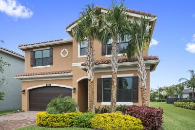 Delray Beach Single Family Home Contingent: 8059 Cactus Quartz Circle