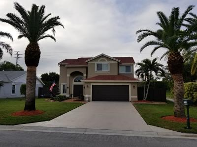 Boynton Beach Single Family Home For Sale: 9807 Goldenrod Drive