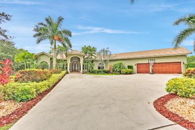 Boynton Beach Single Family Home For Sale: 9067 Strandhill Way