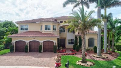 Boynton Beach Single Family Home For Sale: 8765 Baystone Cove