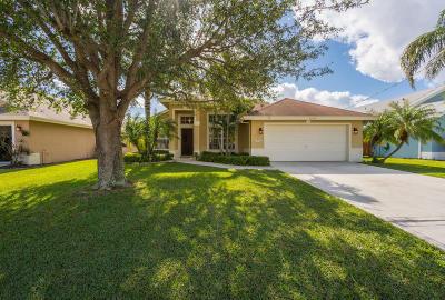 Jupiter Single Family Home For Sale: 6078 Foster Street