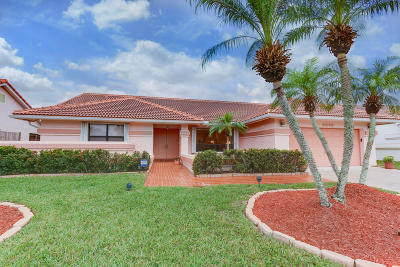 Boynton Beach Single Family Home For Sale: 9646 Sun Pointe Drive