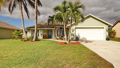 Port Saint Lucie Single Family Home For Sale: 189 NE Sagamore