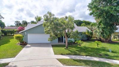 Boynton Beach Single Family Home For Sale: 90 Las Brisas