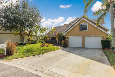 Palm City Single Family Home For Sale: 1193 SW Middle Stream Court