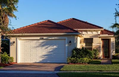 Port Saint Lucie Single Family Home For Sale: 11300 SW Mountain Ash Circle