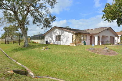 Port Saint Lucie Single Family Home For Sale: 1750 SW Castinet Lane