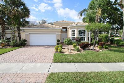 Lake Worth Single Family Home For Sale: 9672 Taormina Street