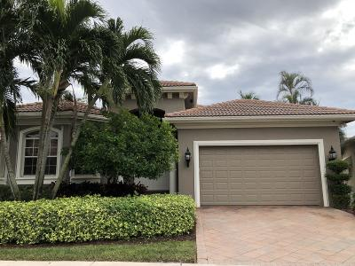 Boca Raton Single Family Home For Sale: 4151 NW Briarcliff Circle