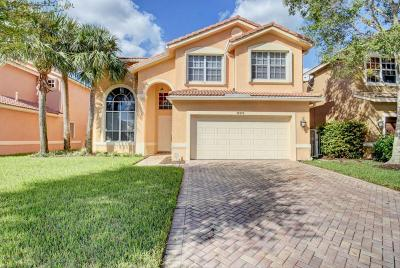 Boynton Beach Single Family Home For Sale: 12373 Colony Preserve Drive