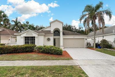 Boca Raton Single Family Home For Sale: 9502 Aegean Drive