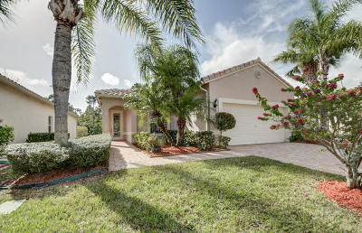 Port Saint Lucie Single Family Home Contingent: 319 NW Treeline Trace