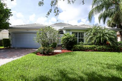 Lake Worth Single Family Home For Sale: 7904 Amethyst Lake Point