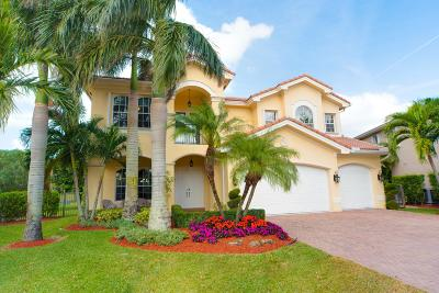 Boynton Beach Single Family Home For Sale: 11261 Misty Ridge Way