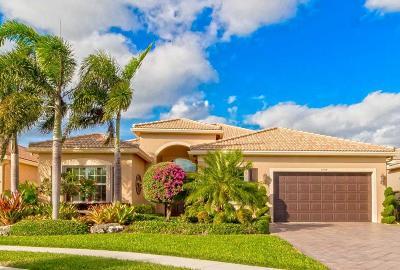 Boynton Beach Single Family Home For Sale: 9788 Dovetree Isle Drive