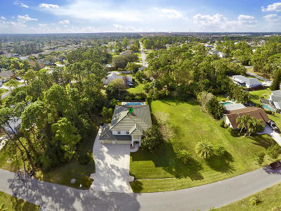 Port Saint Lucie Single Family Home For Sale: 3032 SW Collings Drive