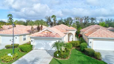 Delray Beach Single Family Home For Sale: 4619 Hammock Circle
