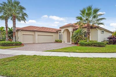 Port Saint Lucie Single Family Home For Sale: 877 SW Grand Reserve Boulevard