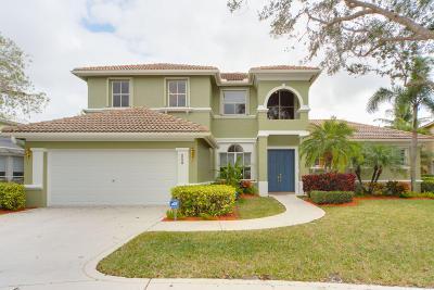 Jupiter Single Family Home For Sale: 243 Spoonbill Lane S