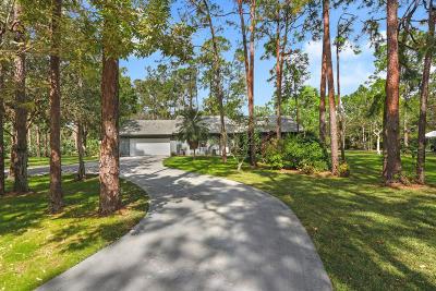 Jupiter Single Family Home For Sale: 13365 164th Court