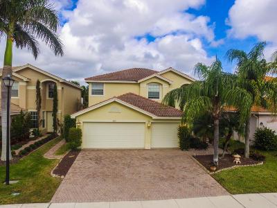 Greenacres Single Family Home For Sale: 5531 Baja Terrace
