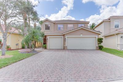 Lake Worth Single Family Home For Sale: 7199 Via Leonardo